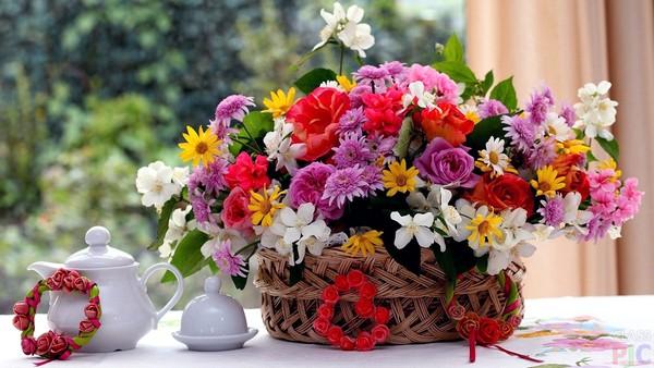 Цвета и ароматы на фоне зимней хандры