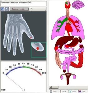 Роль акупунктуры в лечении многих заболеваний